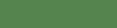 logo_X1_footer